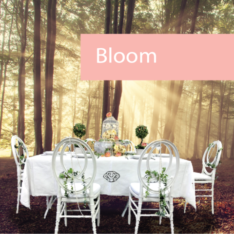 Bloom! Spring Event Furniture