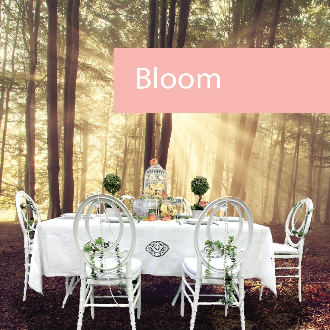 Bloom! Spring Event Furniture